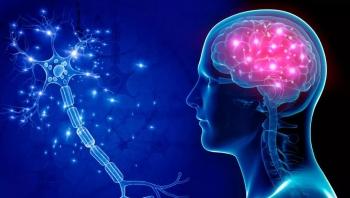 هل يمكن للرياضيات أن تفسر نمو خلايا الدماغ؟