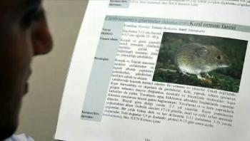 """بعد كورونا.. فيروس """"هانتا"""" يظهر في الصين ويسجل أول وفاة"""