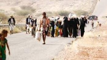 الهجرة الدولية : سجلنا نزوح 10 آلاف شخص في مأرب خلال شهر واحد