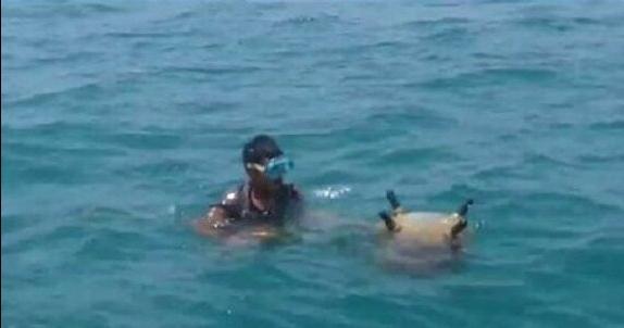وسائل إعلام سعودية : تدمير أربعة ألغام بحرية زرعها الحوثيون في البحر الأحمر
