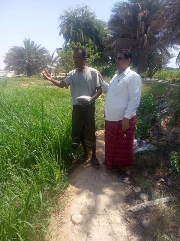إدارة الإرشاد بمكتب الزراعة بالمهرة توزع بذور محاصيل الورقيات على المزارعين