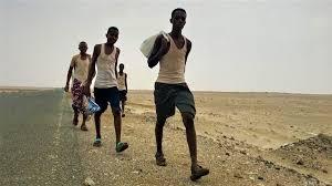 الهجرة الدولية : وصول أكثر من 5 آلاف مهاجر أفريقي إلى اليمن