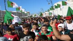 أكثر من مئة ألف يشاركون في احتجاجات بالجزائر