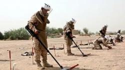 مركز حقوقي: جماعة الحوثي المسؤول الوحيد عن زراعة الألغام في اليمن