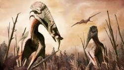 بين جلوس الرجال بالمنزل وعودة الديناصورات.. كورونا وطرائف الشعوب