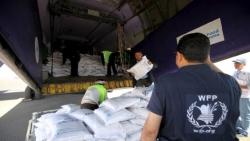 الأغذية العالمي يعلن خفض المساعدات لمناطق الحوثيين باليمن