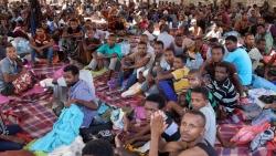 المنظمة الدولية للهجرة: اليمن يبدأ نقلا إجباريا للمهاجرين الإثيوبيين