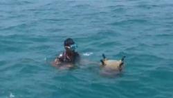 التحالف: تضرر سفينة تجارية بعد ارتطمها بلغم في البحر الأحمر