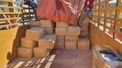 ضبط عصابة من جنسيات أفريقية تمتهن السرقة بمديرية شحن